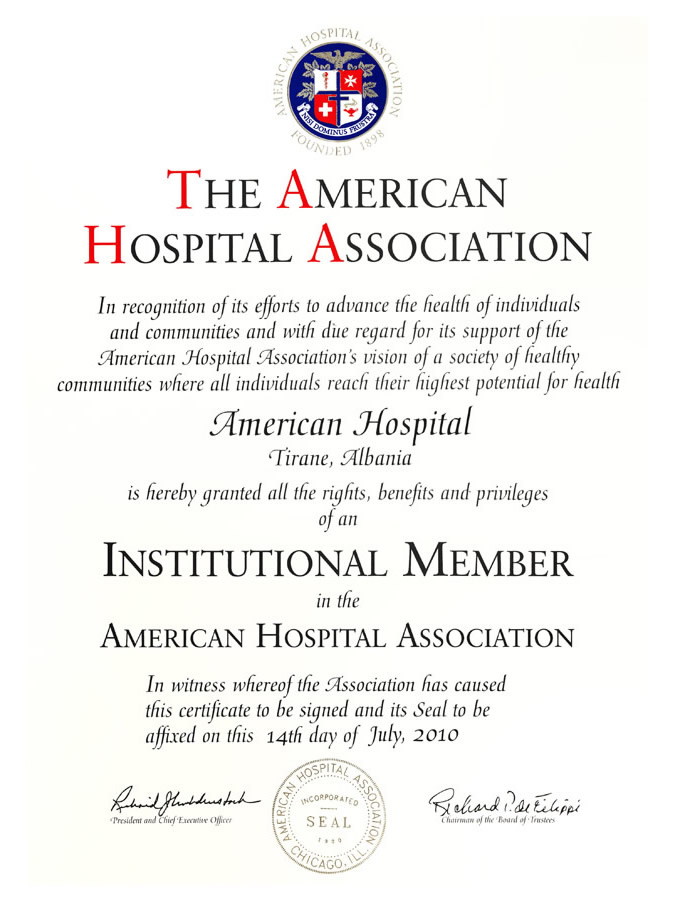 The American Hospital Association